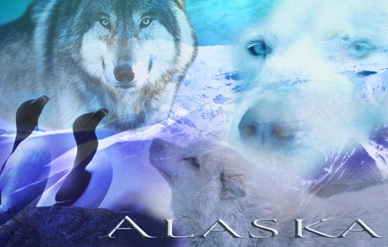 Alaska Part 2