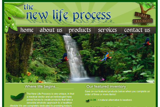 The New Life Process